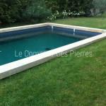 Margelles de piscinePierre de Bourgogne Lavigny ep. 15 cm