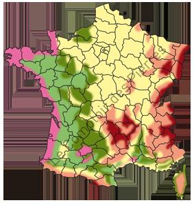 Picto Carte de France zones de gel pour les pierre de Borugogne