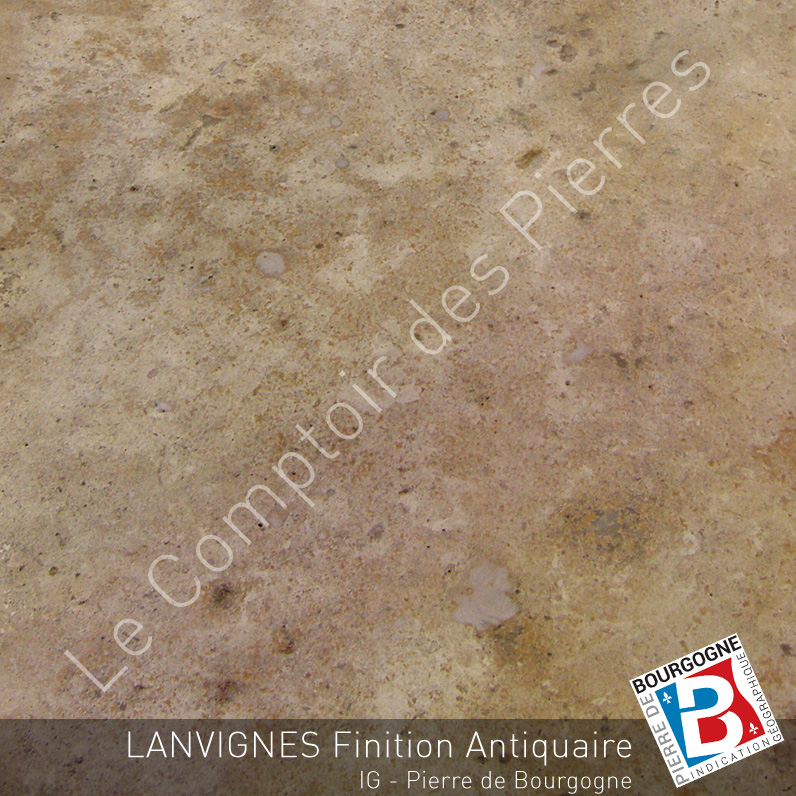 Pierre de Bourgogne Lanvignes Antiquaire