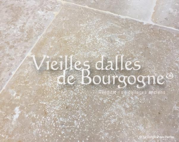 Dalles anciennes en pierre - Savoisy