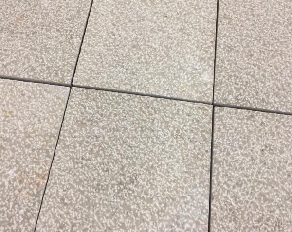 Pavé en pierre 10x10 cm